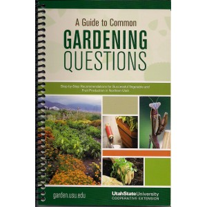 A Guide to Common Gardening Questions