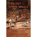 Secret of the Spirit Walls